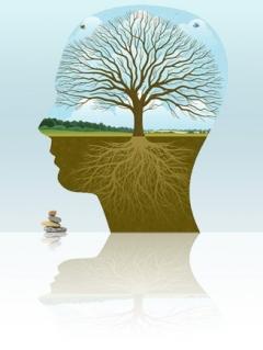 podvědomí-leadership-v.240.319.s