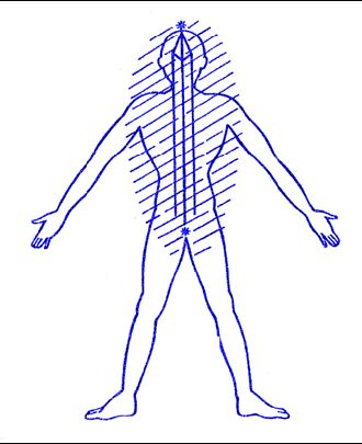 Výsledok vyhľadávania obrázkov pre dopyt komplex vědomí a éterického těla.